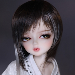 1/6 brown& gray long hair